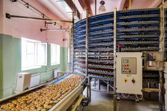 Automated round conveyor machine in bakery food factory, cookies and cakes production line.  stock image