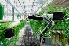 Automatic agricultural technology robot arm watering plants. Tree stock image