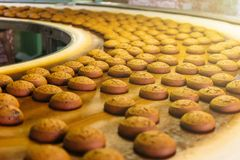 Automatic bakery production line with sweet cookies on conveyor belt equipment machinery in confectionary factory workshop royalty free stock image