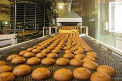 Automatic bakery production line with sweet cookies on conveyor belt equipment machinery in confectionary factory workshop. Industrial food production royalty free stock photos
