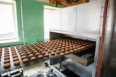 Automatic bakery production line with sweet cookies on conveyor belt equipment machinery in confectionary factory workshop stock images