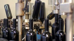 Automatic bottling lines wine equipment detail stock video