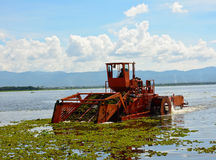 Automatic cleaning ship  are removing water hyacinth in marsh Royalty Free Stock Images