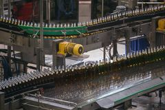 Automatic conveyor line or belt with glass bottles at brewery production. Industrial beer bottling equipment machinery. Toned royalty free stock photo