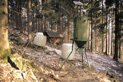 Automatic feeder for forest animals royalty free stock images