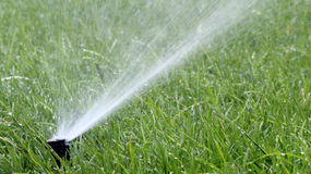 Automatic Garden Irrigation Spray Stock Photography