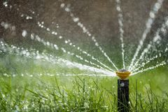 Sprinkler in action watering grass. Automatic garden lawn sprinkler in action watering grass royalty free stock photos