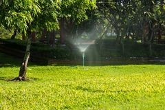 Automatic Garden Lawn sprinkler. In action watering grass Stock Images