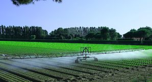 Automatic irrigation system in the field Stock Images