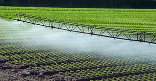 Automatic irrigation system in the field Stock Photography