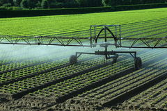 Automatic irrigation system in the field Royalty Free Stock Images