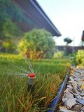 Automatic irrigation system for the garden near the sidewalk stock image