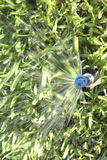 Automatic Lawn Grass and Garden Sprinklers Stock Images