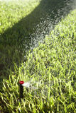 Automatic Lawn Grass and Garden Sprinklers Stock Image