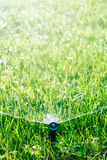 Automatic lawn sprinkler Royalty Free Stock Images
