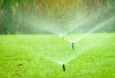 Automatic lawn sprinkler watering green grass. Sprinkler with automatic system. Garden irrigation system watering lawn. Water royalty free stock photo