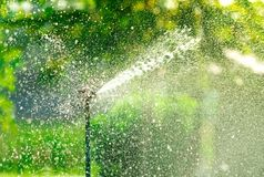 Automatic lawn sprinkler watering green grass. Sprinkler with automatic system. Garden irrigation system watering lawn. Water stock photo