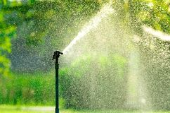 Automatic lawn sprinkler watering green grass. Sprinkler with automatic system. Garden irrigation system watering lawn. Water s stock images