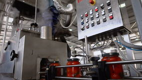 Automatic Line for Processing and Canning Vegetables . Preserving Tomatoes stock video