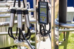 Automatic mechanized milking equipment for farm industry Royalty Free Stock Images