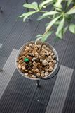 Automatic plant watering installed under small rock stone. In metal pot royalty free stock photography