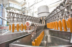 Automatic production line of fruit ice cream Royalty Free Stock Image