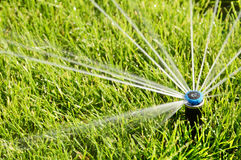 Automatic Sprinkler head spraying water over green grass. Royalty Free Stock Images