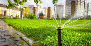 Automatic sprinkler system watering the lawn on a background of green grass. Close-up Stock Images