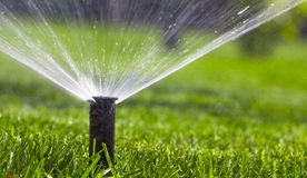 Free Automatic Sprinkler System Watering The Lawn On A Background Of Green Grass Royalty Free Stock Photo - 105153205