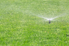 Automatic sprinkler Stock Images