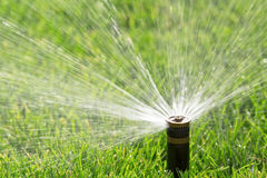 Automatic sprinkler Royalty Free Stock Photo