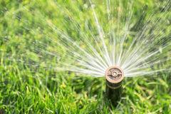 Automatic sprinkler Stock Photography