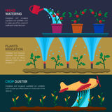 Automatic Sprinklers Watering. Agriculture Stock Photos