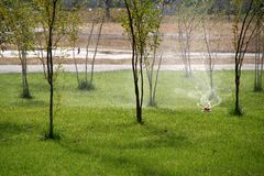 Automatic sprinklers watering green grass in park royalty free stock image
