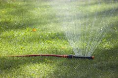 Automatic Watering the green lawn garden sprinkler on a sunny su. Mmer royalty free stock photography