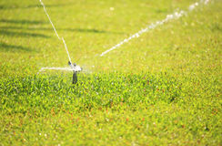 Automatic watering lawn Stock Photography