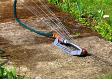 Automatic watering lawns device Stock Photography
