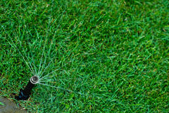 Automatic watering lawns. Gardening and landscapeing. Royalty Free Stock Image