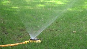 Automatic watering system on green grass stock video footage
