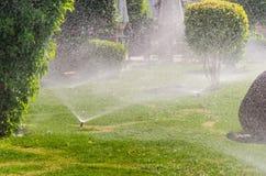 Automatico spruzzi le piante nel giardino Fotografia Stock Libera da Diritti