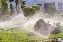 Automatico spruzzi le piante nel giardino Immagine Stock Libera da Diritti