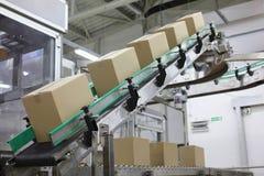 Automation - askar på transportbandet i fabrik Arkivbilder