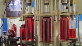 Automation i vinodlingen På transportören hällt rött vin i flaska lager videofilmer