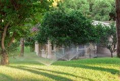 Automatisch besprühen Sie Anlagen im Garten stockfoto