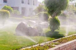 Automatisch besprühen Sie Anlagen im Garten lizenzfreie stockfotografie