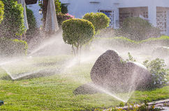 Automatisch besprühen Sie Anlagen im Garten lizenzfreies stockbild
