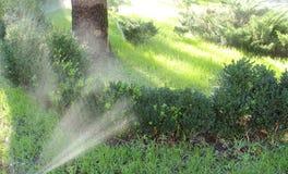 Automatisch, den Rasen wässernd stockbilder
