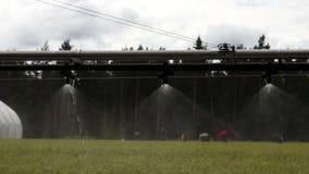 Automatische Bewässerungsausrüstung der Landwirtschaft stock video footage
