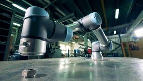 Automatiserad apparat som arbetar på en tabell på en växt stock video