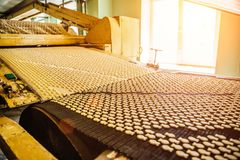 Automatiserad produktionslinje av små salta smällarekakor i form av fisken Kakor på transportbandet arkivfoto